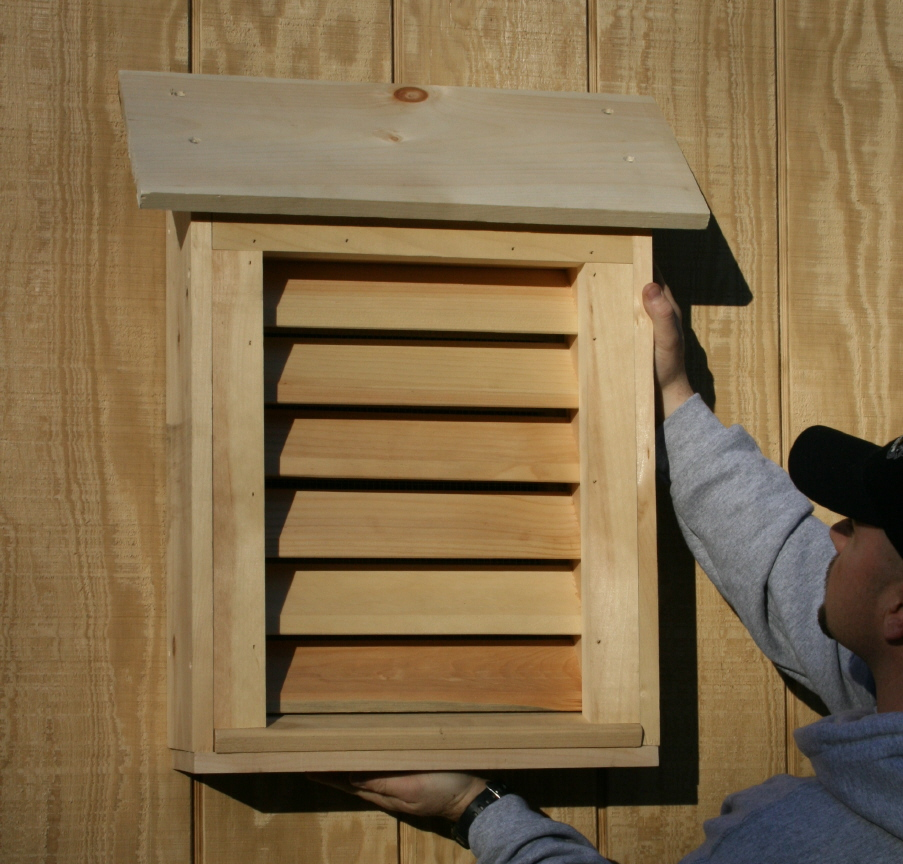 building a bat house